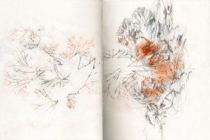 dessin sur papier d'Emmanuel Rivière faisant référence à la grotte Chauvet